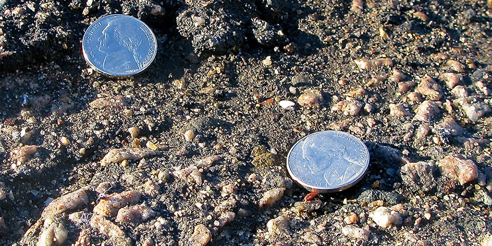 Nickels In Front of Bulldozers